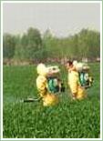 万博登录病虫害防治